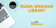 BSAVA webinar lib image